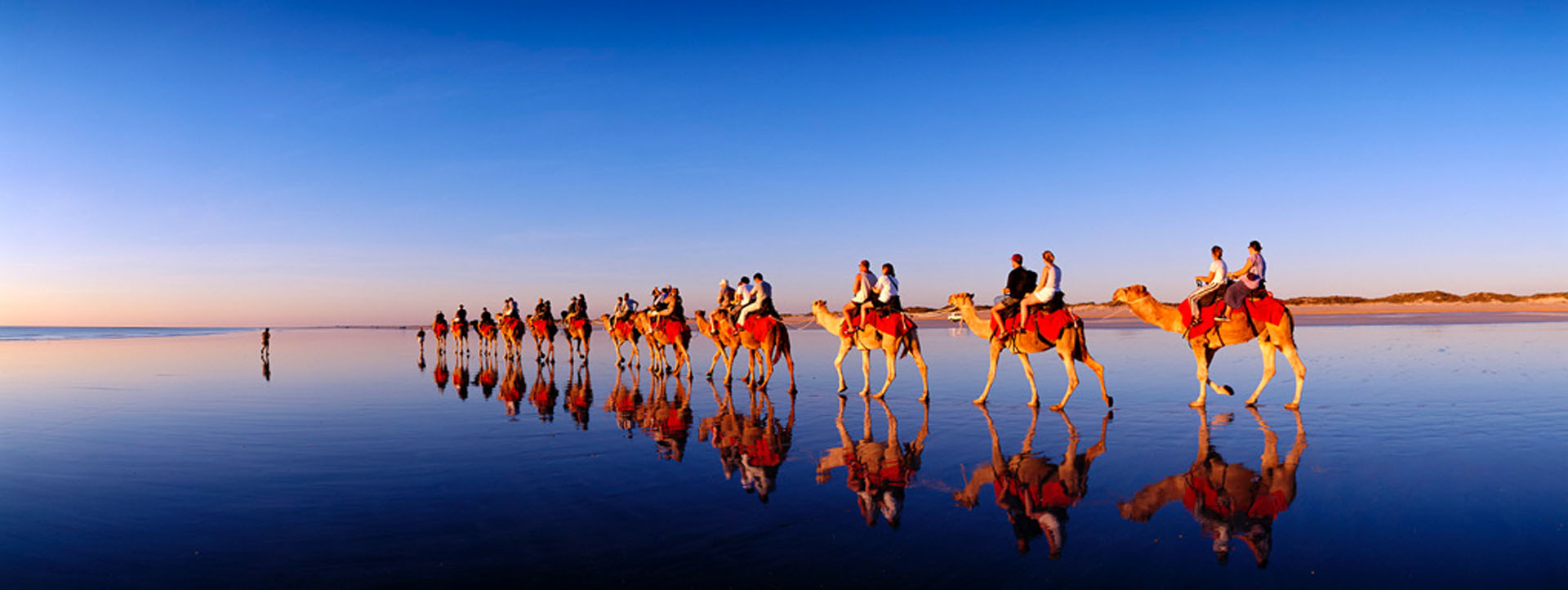 CAMEL RIDES BROOME RED