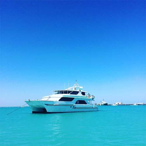 DIVERSITY-II-blue-water-boat-charters