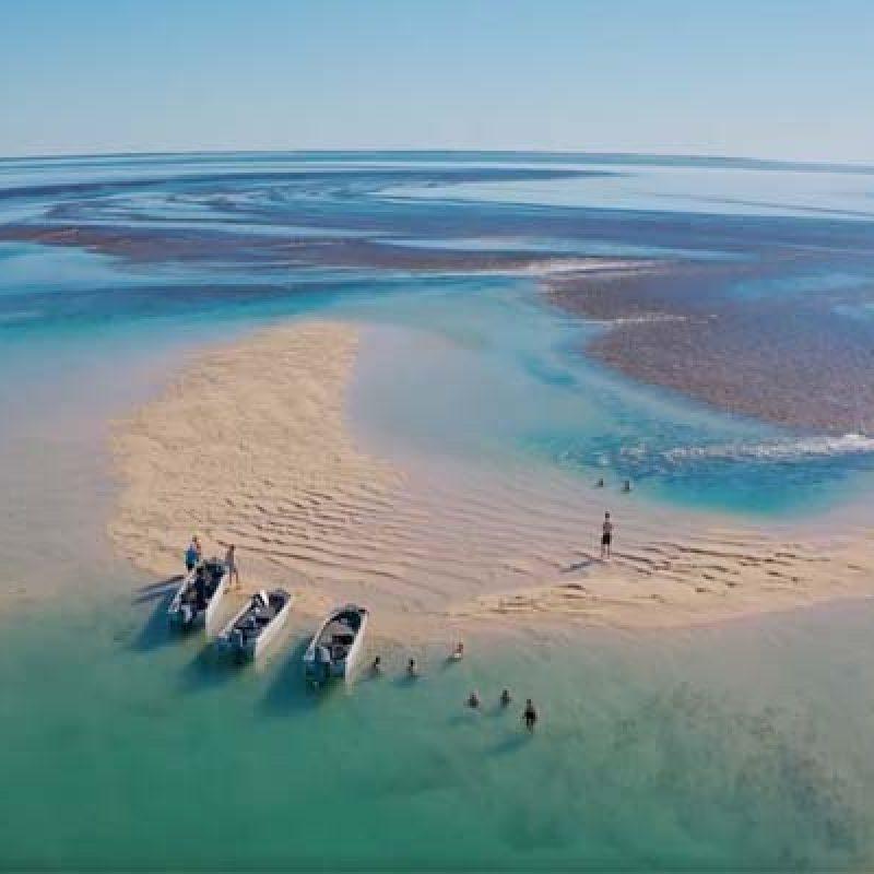 DIVERSITY-II-tenders-at-reef