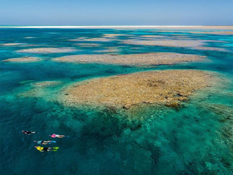 LADY M Rowley Shoals cruises atoll snorkel swim