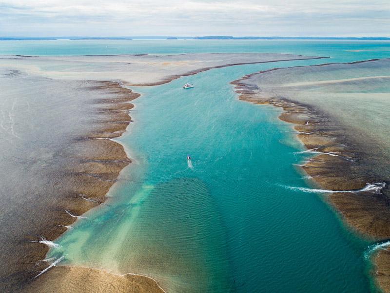 REEF PRINCE Kimberley cruise Mongomery Reef aerial